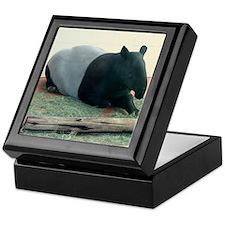 Helaine's Tapir Keepsake Box