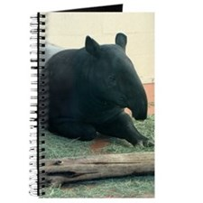 Helaine's Tapir Journal