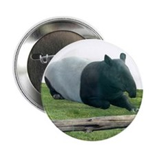 "Helaine's Tapir 2.25"" Button"
