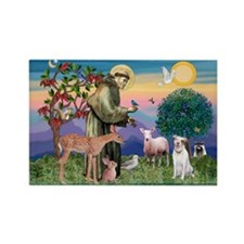 St Francis / Pitbull Rectangle Magnet