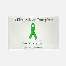Kidney/Liver Transplant Rectangle Magnet
