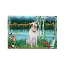 Birches / Pit Bull Terrier Rectangle Magnet (10 pa