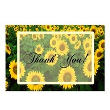 Sunflower Field Thank You Postcards (Package of 8)