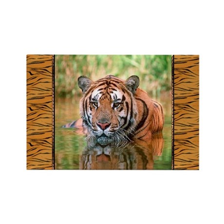 Bengal Tiger In Water Rectangle Magnet (100 pack)