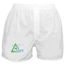 Yoyodyne Boxer Shorts