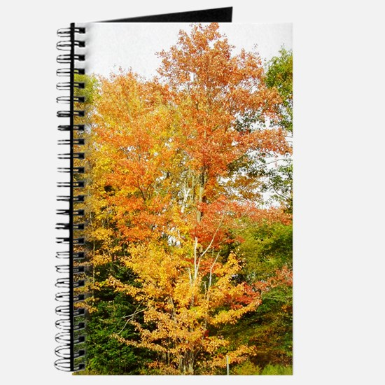 Fall Colors Personal Journal