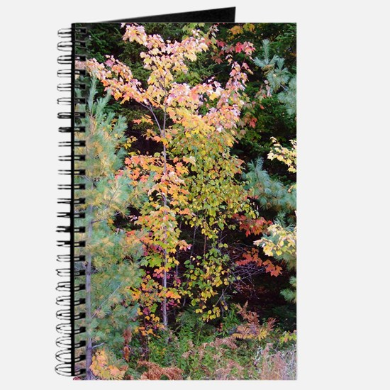 Colored Foliage Personal Journal