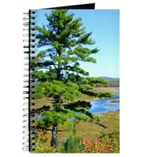 Pine Sentinel Personal Journal