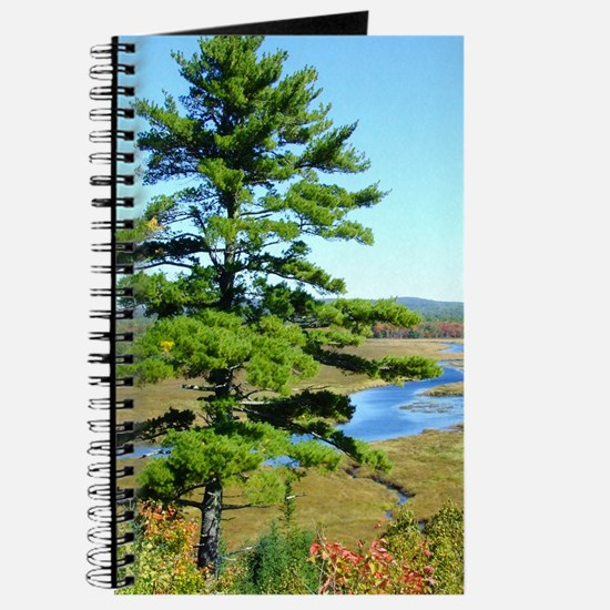 Pine Sentinel Personal Journal