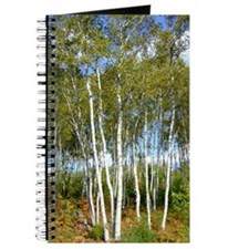 White Birch Trees Personal Journal
