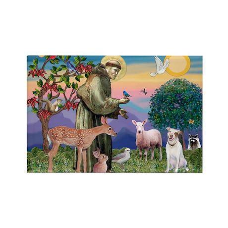 St Francis /Pit Bull Terrier Rectangle Magnet