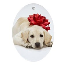 Yellow Lab Puppy Ornament (Oval)