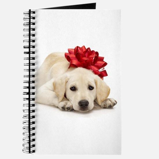Yellow Lab Puppy Journal