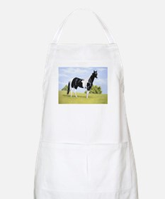 Painted Warrier BBQ Apron