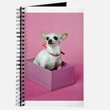 Birthday Chihuahua Journal