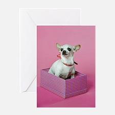 Birthday Chihuahua Greeting Card