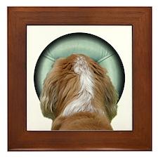 Dog Massage Framed Tile