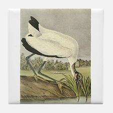 Wood Stork Tile Coaster