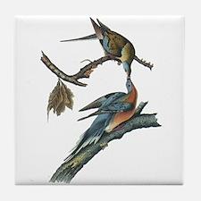 Passenger Pigeon Tile Coaster