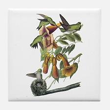 Ruby-throated Hummingbird Tile Coaster