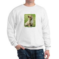 Swedish Vallhund Puppy 9Y165D-173 Sweatshirt