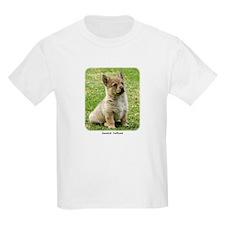 Swedish Vallhund Puppy 9Y165D-173 T-Shirt