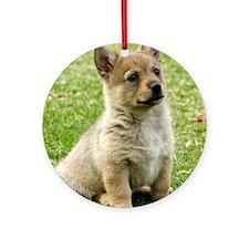 Swedish Vallhund Puppy 9Y165D-173 Ornament (Round)