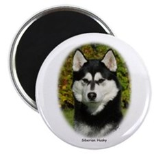 Siberian Husky 9P046D-46 (2) Magnet