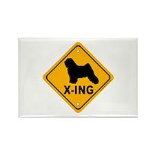 Tibetan Terrier X-ing Rectangle Magnet (10 pack)