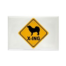 Tibetan Mastiff X-ing Rectangle Magnet (100 pack)