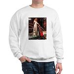 Accolade/Bull Terrier 1 Sweatshirt