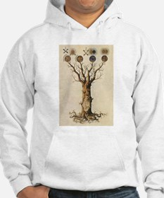 Cute Pagan new age ppd wiccan nashville Hoodie