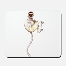 Verreaux's Sifaka Lemur Mousepad
