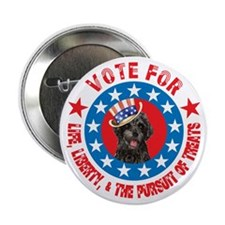 "Vote for PWD 2.25"" Button"