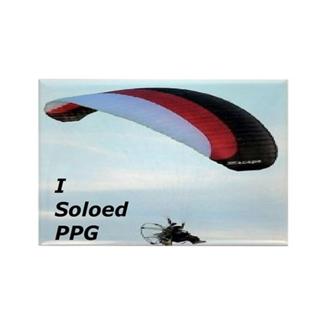 Soloed PPG Rectangle Magnet (10 pack)