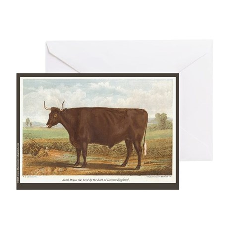 North Devon Ox Greeting Cards (Pk of 20)