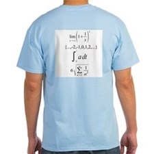 Calculus Pun Tee.