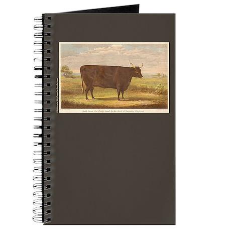 North Devon Cow Journal 2