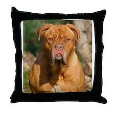 Cute French mastiff Throw Pillow