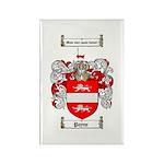 Payne Family Crest Rectangle Magnet (10 pack)