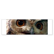 Mysterious Owl! Bumper Bumper Sticker