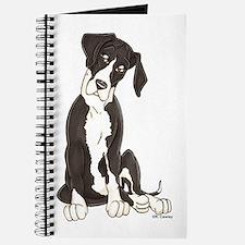 NMTL Tilt Pup Journal