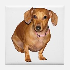 Helaine's Doxie Tile Coaster