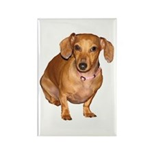 Helaine's Doxie Rectangle Magnet