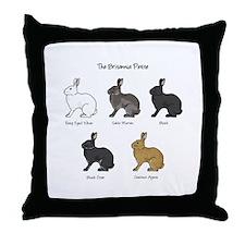 Britannia Petite Colors Throw Pillow