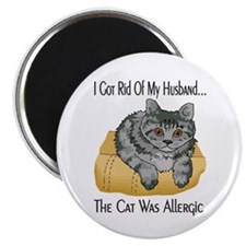 Cat Was Allergic Magnet