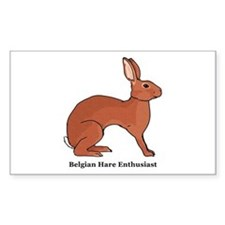 Belgian Hare Enthusiast Rectangle Decal