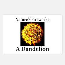 Nature's Fireworks: A Dandeli Postcards (Package o