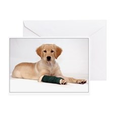 SNAPshotz Golden Puppy Feel Better Soon Card
