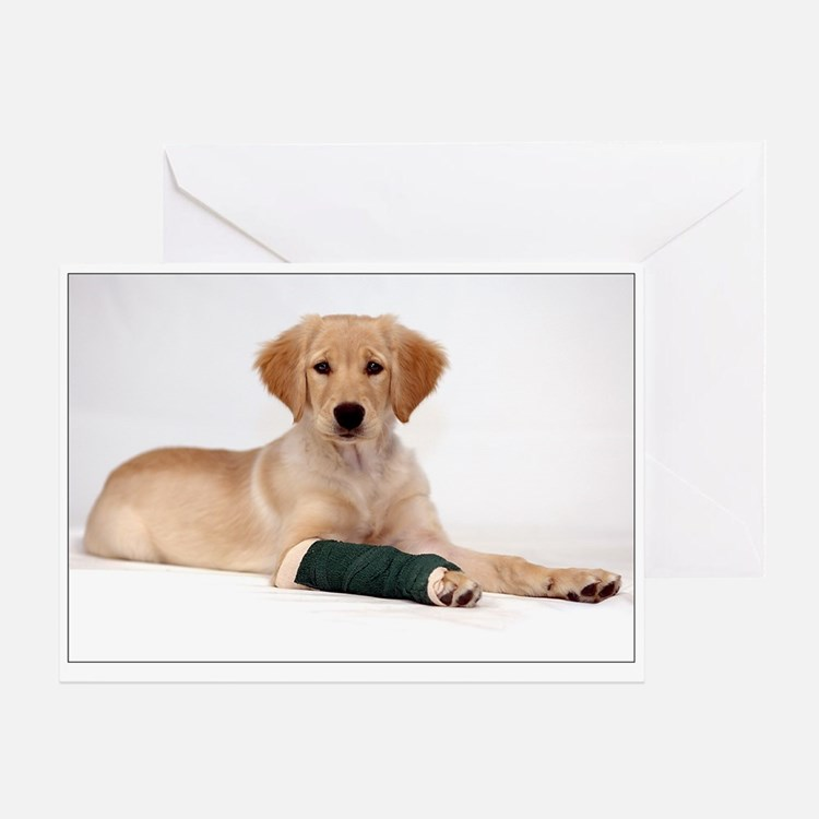 SNAPshotz Golden Puppy Well Soon Photocard
